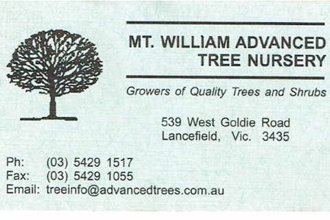 Mt William Business Card Old