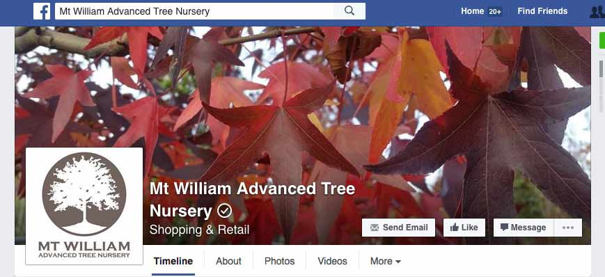 advanced trees on facebook web